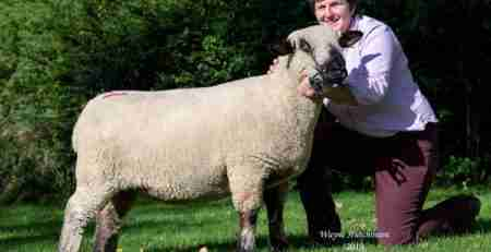 Female and Overall champion from G&J Galbraith, Graylen. 1150ns.