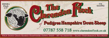 Clarendon WEB-page-001