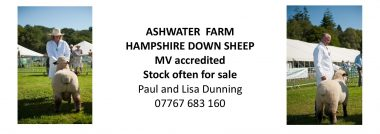 Web Ashwater-page-001 (1)